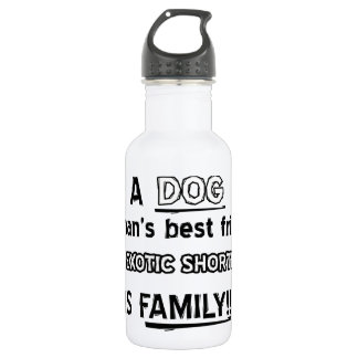 Exotic shorthaired cat design stainless steel water bottle