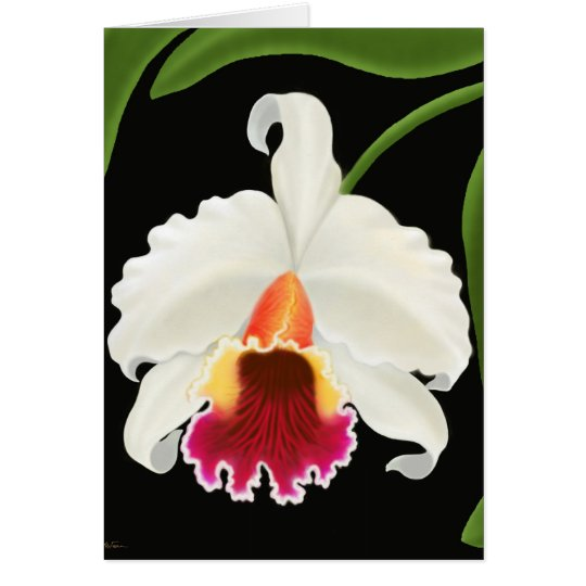 Exotic Tropical Cattleya Orchid Card
