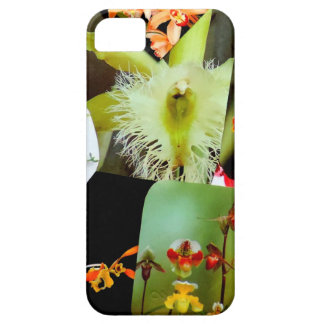 Exotic Tropical Orchids Collage Design Photo iPhone 5 Covers