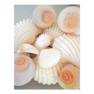 Exotic White Peach Sea Shells, Summer Beach Letterhead