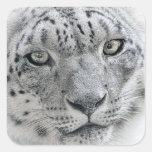 Exotic White Snow Leopard Square Sticker