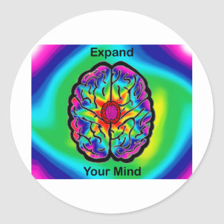 Expand Your Mind Classic Round Sticker