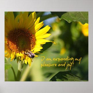 Expanding Pleasure & Joy Sunflower Poster