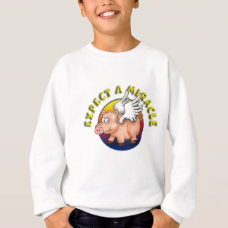 Expect A Miracle --- AA Recognition Sweatshirt