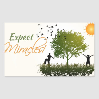 Expect Miracles Rectangle Sticker