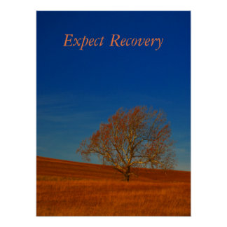 Expect Recovery Poster