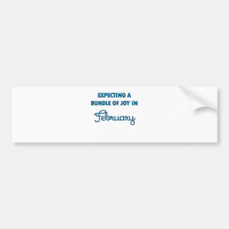 Expecting a bundle of joy in February blue.png Bumper Sticker