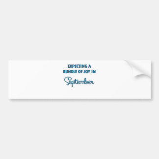 Expecting a bundle of joy in September  blue.png Bumper Sticker