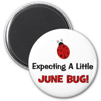 Expecting A Little June Bug Maternity 2 Inch Round Magnet