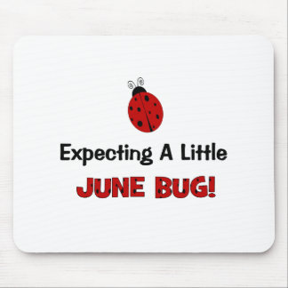Expecting A Little June Bug Maternity Mouse Pad