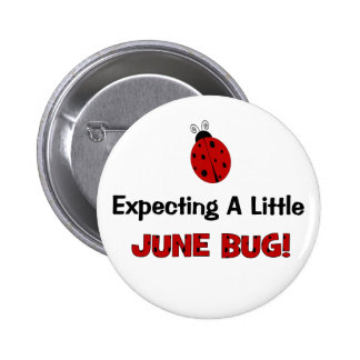 Expecting A Little June Bug Maternity Pinback Button