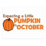 Expecting A Little Pumpkin In October Postcard