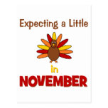 Expecting A Little Turkey in November! Postcard