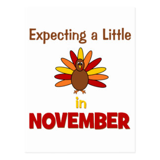 Expecting A Little Turkey in November Postcard