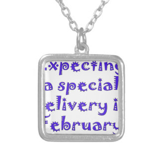 expecting a special delivery in february.png silver plated necklace