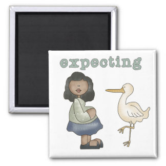 Expecting - African American Mom to Be and Stork Magnet