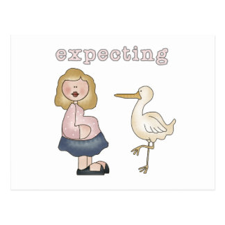 Expecting Baby - Stork Tshirts and Gifts Postcard