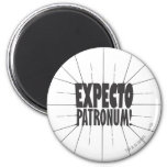 Expecto Patronum! 2 Inch Round Magnet