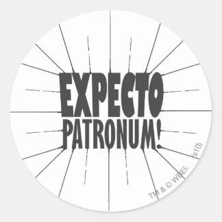 Expecto Patronum! Classic Round Sticker