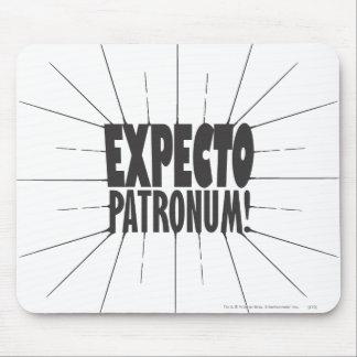¡Expecto Patronum! Tapete De Ratones