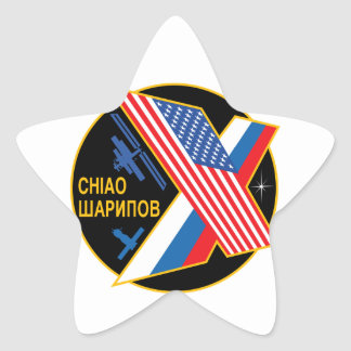 Expedition Crews to the ISS Expedition 10 Star Stickers