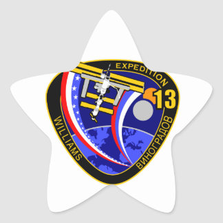 Expedition Crews to the ISS Expedition 13 Star Sticker