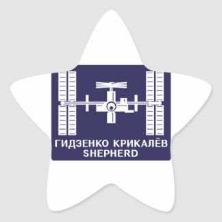 Expedition Crews to the ISS Expedition 1 Star Stickers
