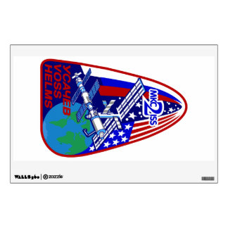 Expedition Crews to the ISS:  Expedition 2 Wall Decal