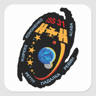 Expedition Crews to the ISS:  Expedition 31 Stickers
