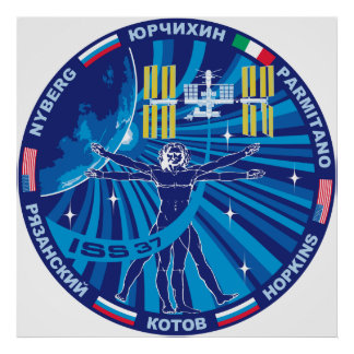Expedition Crews to the ISS :   Expedition 37 Poster
