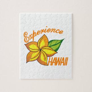 Experience Hawaii Jigsaw Puzzle