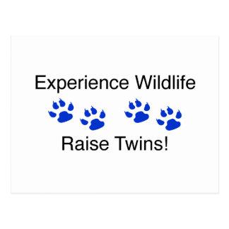 Experience Wildlife Raise Twins Post Card