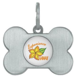 Experiencia Hawaii Placas De Mascota