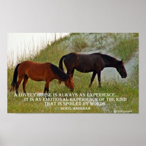 experimente un caballo póster