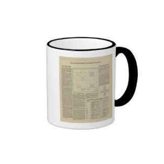 Explanation of Government Surveys Mugs