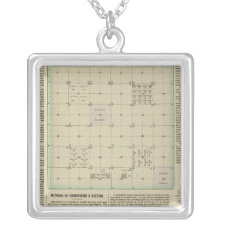 Explanation of Government Surveys Silver Plated Necklace