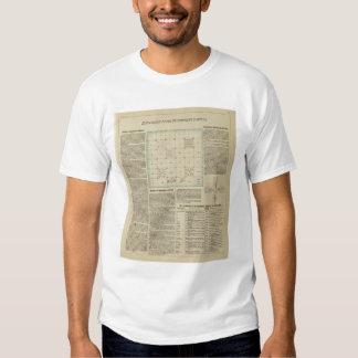 Explicación de las encuestas sobre el gobierno camisas
