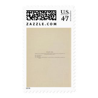 Explicación de LXX Sellos Postales
