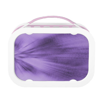Exploding Lavender Lunch Box