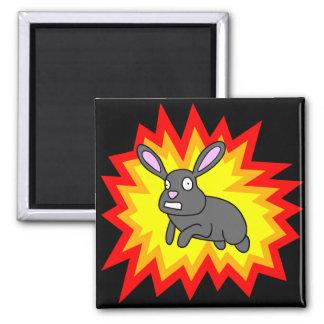Exploding Rabbit Magnet