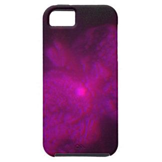 Exploding Star Eta Carinae, Seen in Three Dimensio iPhone SE/5/5s Case