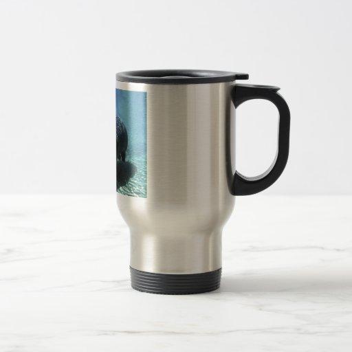 Exploración subacuática taza de viaje