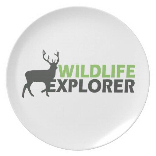 Explorador de la fauna plato