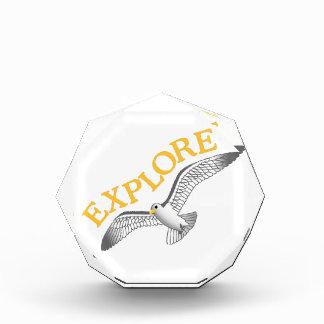 Explore Award