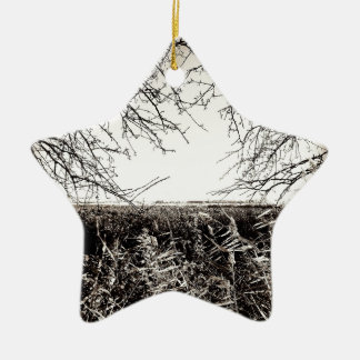 Explore Ceramic Ornament