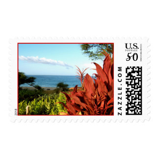 Explore Dream Discover : nature Postage