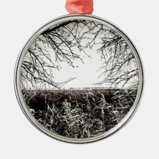 Explore Metal Ornament