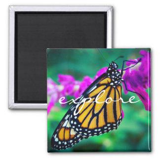"""Explore"" quote orange monarch butterfly photo Magnet"