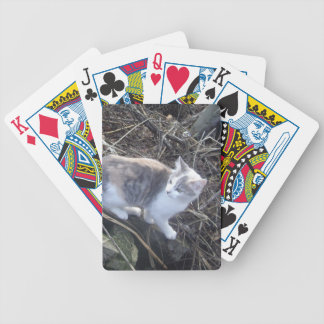 Explorer Playing Cards