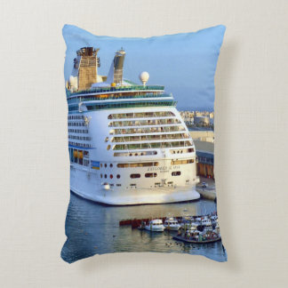 Explorer Stern at Home Accent Pillow